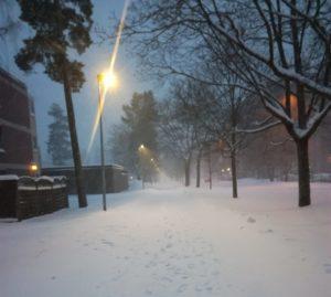 Фото читателей: снегопад