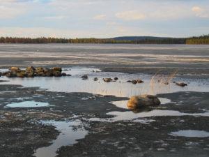 Read more about the article В Финляндии насупила весна