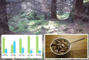 Read more about the article Собираете ли вы грибы?