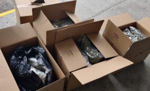 Read more about the article Полиция конфисковала 46 кг марихуаны у ни в чем не повинных фигурантов