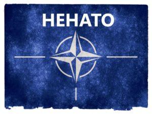 Read more about the article Жители Финляндии не торопятся в НАТО